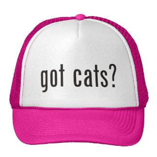 got cats? trucker hat