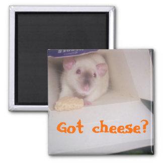 Got cheese? magnet