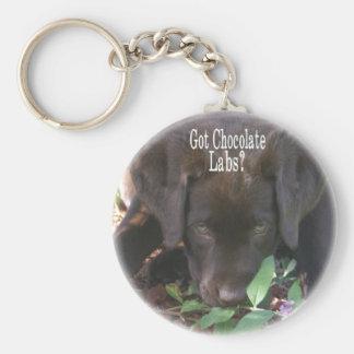 Got Chocolate Labs?  Puppy Basic Round Button Keychain