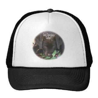 Got Chocolate Labs?  Puppy Trucker Hat