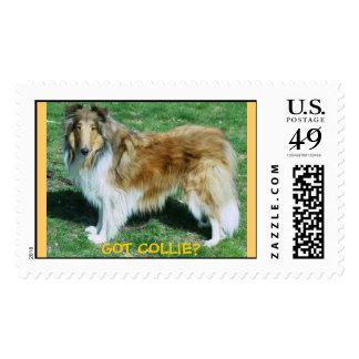 GOT COLLIE? postage