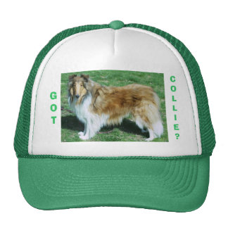 GOT, COLLIE? TRUCKER HAT