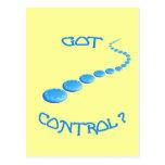 Got Control Frisbee Postcard