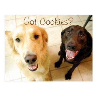 Got Cookies? Postcard