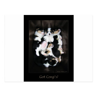 Got Corgi's? Postcards
