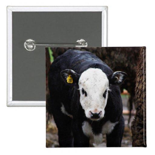 Got Cow Pinback Button