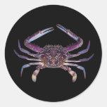 Got Crabs? nice sea crab-dinner time Classic Round Sticker