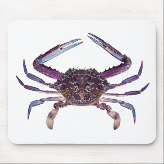 Got Crabs? nice sea crab-dinner time Mouse Pad