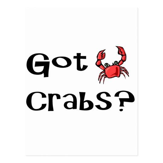 Got Crabs? Postcard