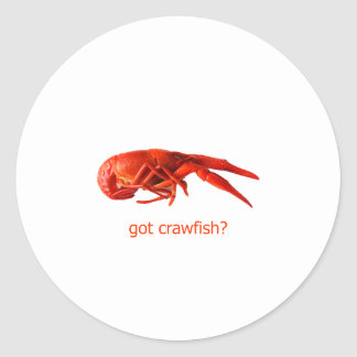 got crawfish Logo Round Stickers