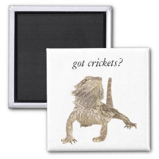 Got crickets fridge magnet