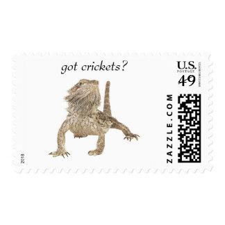 Got crickets postage stamp