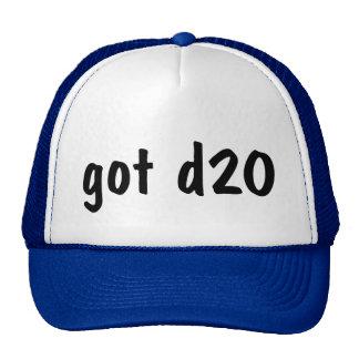 Got d20? trucker hat