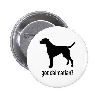 Got Dalmatian Pinback Buttons
