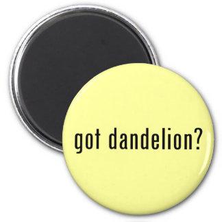got dandelion? refrigerator magnets