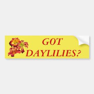 Got Daylilies? Bumper Sticker