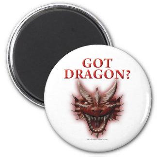 Got Dragon? Fridge Magnet