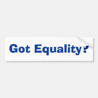 Got Equality? Car Bumper Sticker