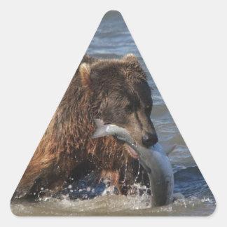 Got Fish? Alaska Brown Bear gifts Triangle Sticker