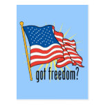 Got Freedom Flag Post Cards
