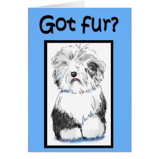 Got Fur Funny Vet Pet Haircut Pamper Business Card