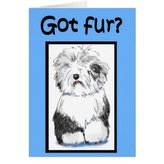 Got Fur Funny Vet Pet Haircut Pamper Business Card