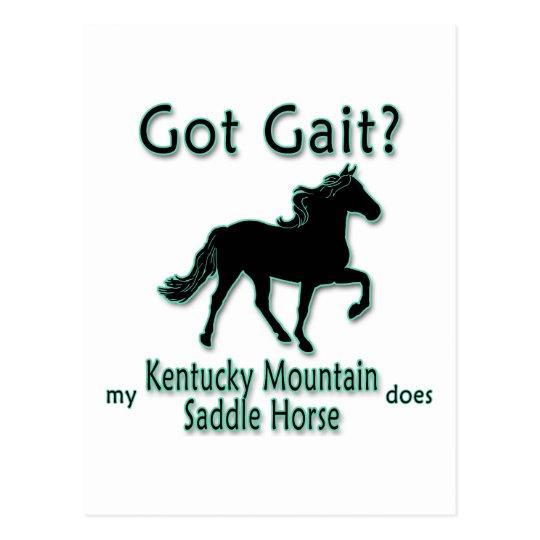 Got Gait? My Kentucky Mountain Saddle Horse Does Postcard
