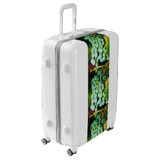 Got Grapes Luggage