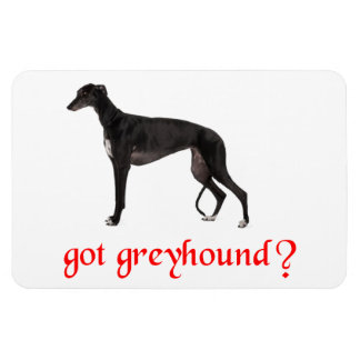 GOT GREYHOUND MAGNET