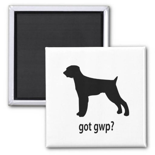 Got GWP 2 Inch Square Magnet