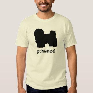 Got Havanese T-Shirt
