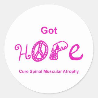 Got Hope - Pink Classic Round Sticker