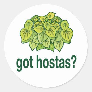 got hostas? classic round sticker