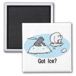 Got Ice? magnet