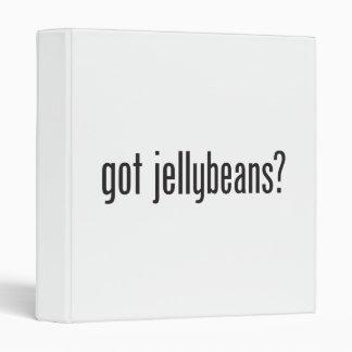 got jellybeans 3 ring binder