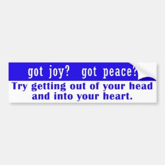 got joy? got peace? Bumper Sticker Car Bumper Sticker