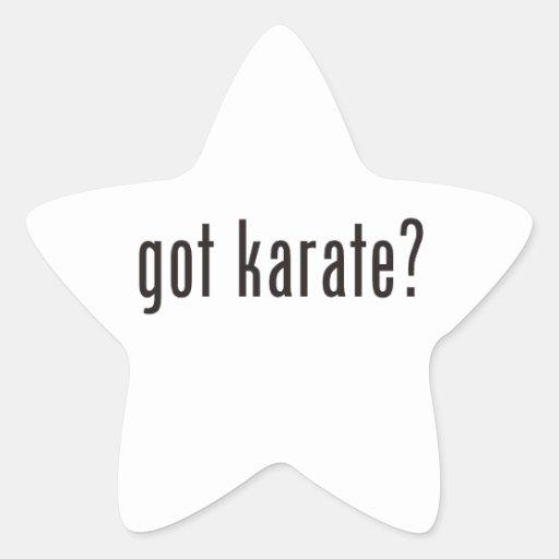 got karate? star sticker
