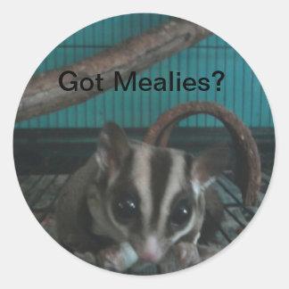 """""""Got Mealies?"""" Sugar Glider Sticker"""