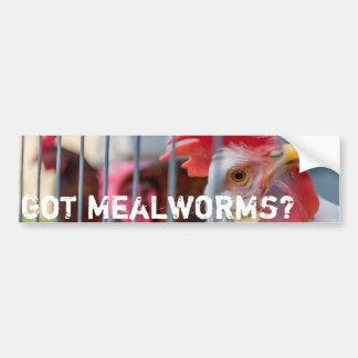 Got Mealworms?? Car Bumper Sticker