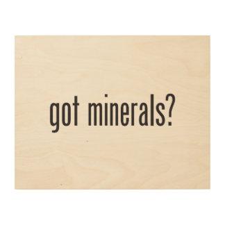 got minerals wood wall art