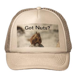 Got Nuts? Trucker Hat