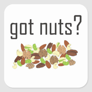 got nuts? (pile of nuts) square sticker