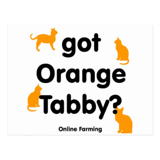 got orange tabby postcard