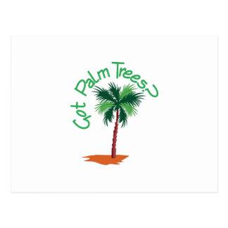 Got Palm Trees? Postcard