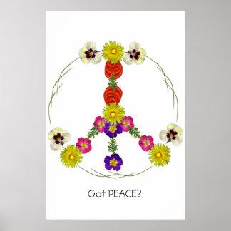 Got Peace? Poster