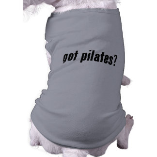 got pilates pet t-shirt