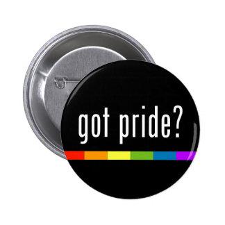 Got Pride: Gay Pride Pinback Button
