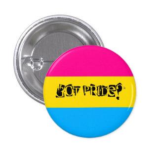 Got Pride? Pansexual Pride Button