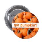 got pumpkin? Button