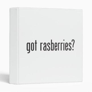 got raspberries binder